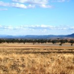 This is Ann photo of Glendon South which was taken from the Moree road just out of Warialda looking south. — at Gwydir.