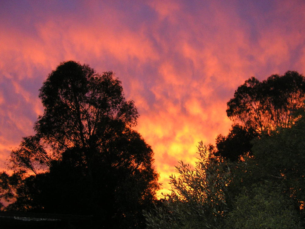 Tenterfield Photo competition entry - Beautiful sunsets Tenterfield
