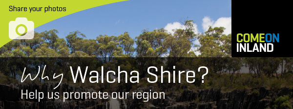 Walcha Photo Comp