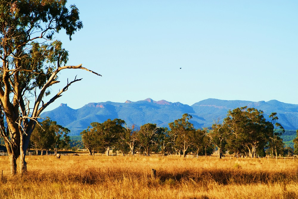 View of Mount Kaputar, by Liza from Narrabri Shire