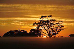 Sunset, by Zoe from Walcha